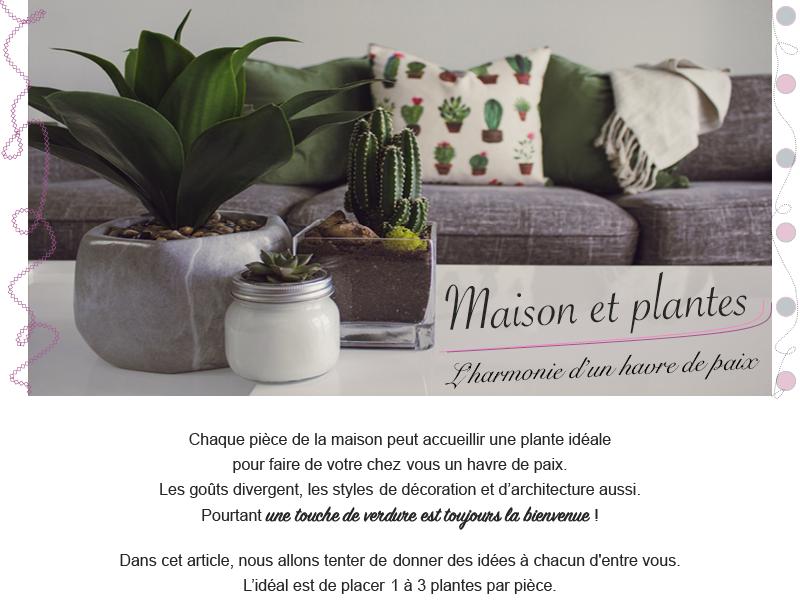 maison et plantes