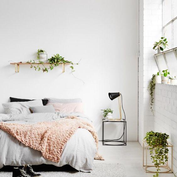 plantes chambre déco 2019
