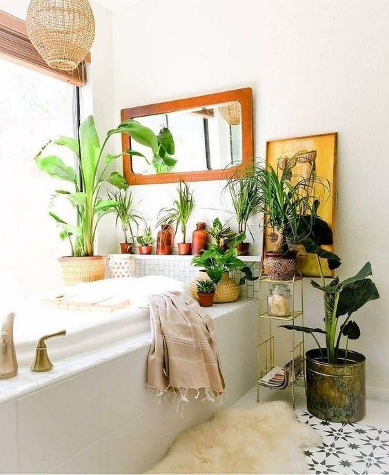 plantes salle de bain déco 2019